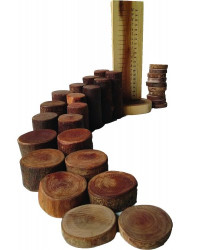 Qtoys Natural Tree Blocks Maths & Counting Set