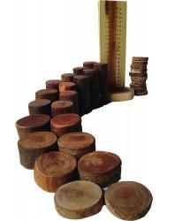Qtoys Natural Tree Blocks Maths & Counting Set