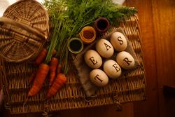 Qtoys Easter Hunt Eggs