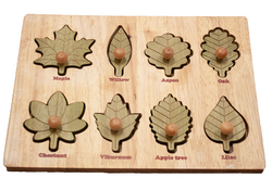 Qtoys Montessori Leaf