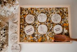 autralian flora set of wooden discs