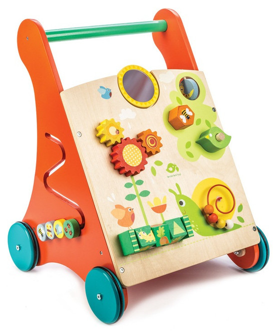 Tenderleaf Baby Activity Walker Set