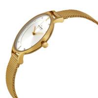 Skagen SKW2150 Anita Crystal Goldtone Stainless Steel Mesh Womens Watch