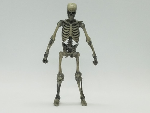 Warrior Skeleton >  Weathered Skeleton <