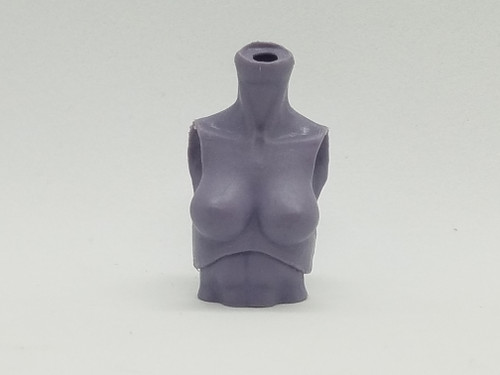 Lacuna Torso with Wing Holes