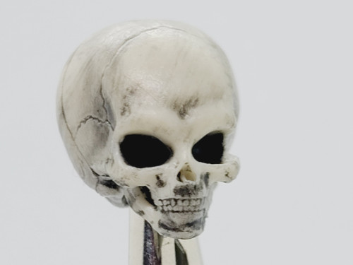 Skeleton Kit - Alien Skull