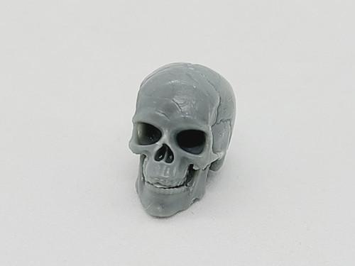 Gray Skeleton Skull
