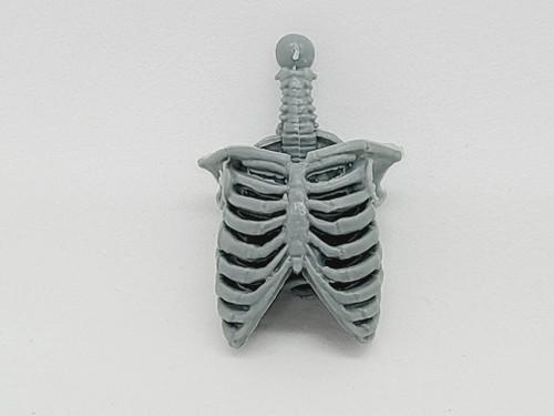 Gray Skeleton Torso