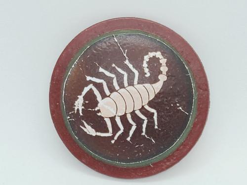 Custom Scorpion Shield