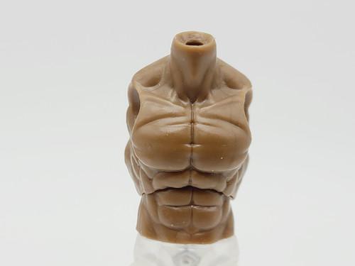 Walnut Male Torso