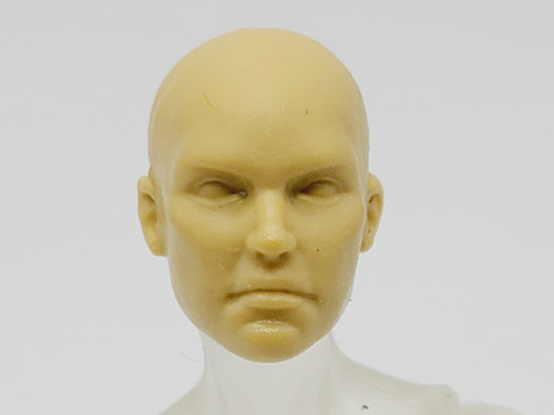 Sunny Wheat Eurayle head (no hair) > Test Shot