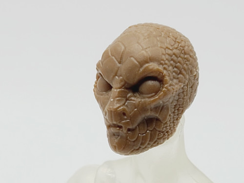 Brown Gorgon Head (closed mouth) > Test Shot