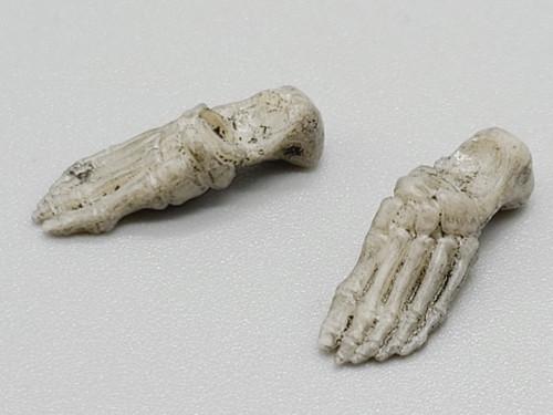 Warrior Skeleton Weathered Feet