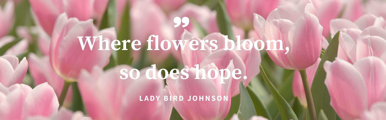 flowersbloombanner.jpg