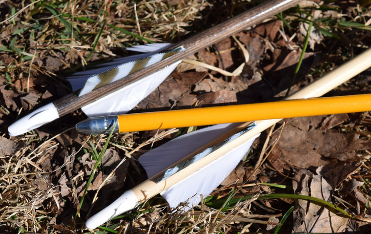 youth arrows (6 pack)
