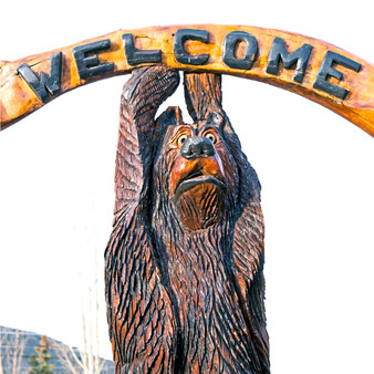 As Colorado is known for its parks which brings wildlife, it features its own natural exhibits, one being a wildlife bear exhibit. Here visitors are welcomed by a  bear as they embark on a new adventure in their life.
