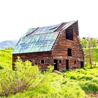 As Colorado is known for its lodges, cabins, and cottages. Featured in this photo is an ancient shed, surrounded by the vast greenery nature provides.