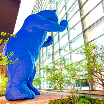 The Big Blue Bear is an iconic art installation created by local artist Lawrence Argent. This sculpture installed in 2005 features a 40-foot bear, weighing 10,000 pounds, designed to appear as if it's looking into the lobby of the convention center located in the heart of downtown Denver.