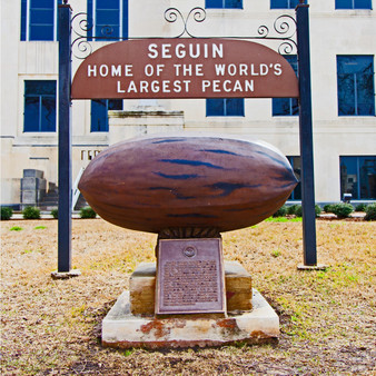 Once known as the world's largest pecan, now it's solely the oldest pecan and was created in 1962. Sitting in front of Seguin's city hall, this pecan was built by a dentist who wanted to put his plastering skills to use.