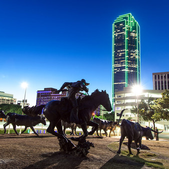 The Dallas Cattle Drive in Pioneer Plaza is a large sculpture commemorating nineteenth century cattle drives that took place along the Shawnee Trail. The sculpture depicts three cowboys and a herd of forty longhorn steer.