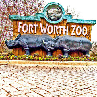 The Fort Worth Zoo is a zoo in Fort Worth, Texas, that was founded in 1909 with one lion, two bear cubs, an alligator, a coyote, a peacock and a few rabbits. Now with over 64 acres of land, this zoo has turned into a rescue shelter for its once wild animals.