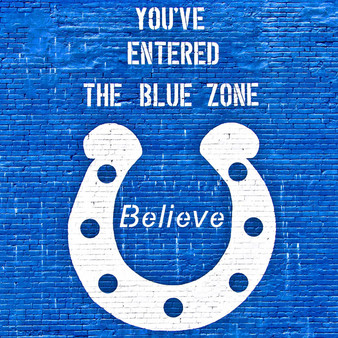 <p>This mural was inspired by The Indianapolis Colts - an American football team based in Indianapolis, Indiana. <p><p>Click &lsquo;Choose a Product&rsquo; above to get this image handprinted on a ceramic 4x4 custom coaster, cutting board, magnet, ceramic trivet, ornament, dog tag or canvas.<p>
