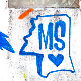 Show your love for Mississippi with this wall mural print!