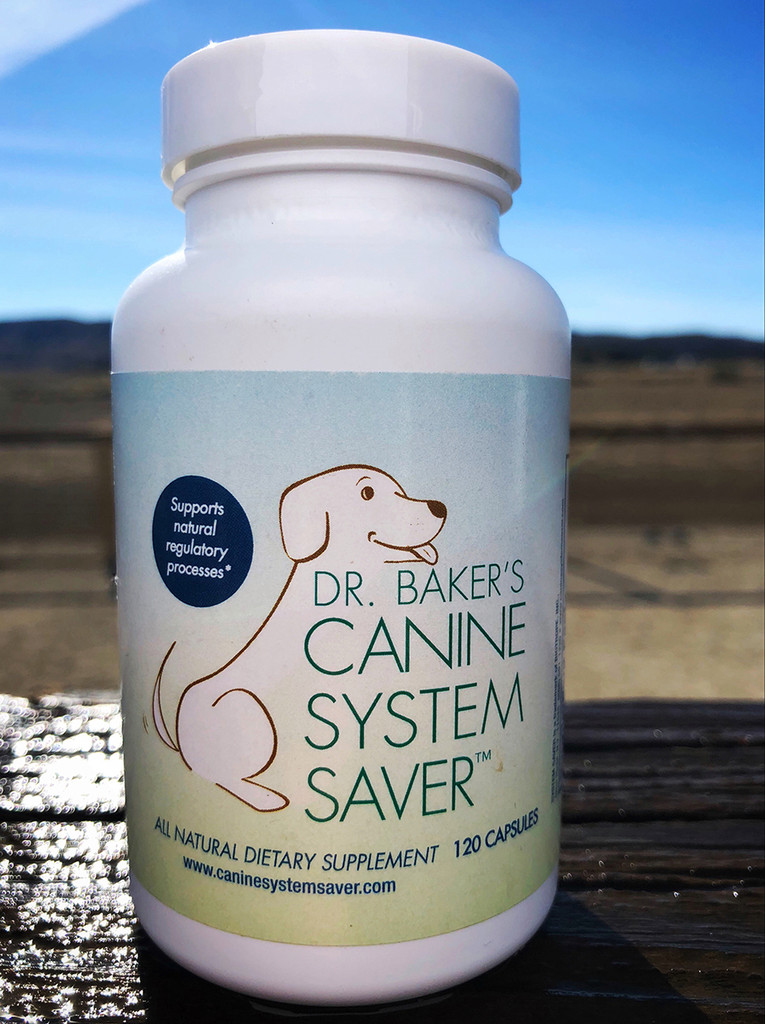 System Saver is an herbal anti-inflammatory. Effective for hip dysplasia, arthritis, tendonitis, bowel and respiratory diseases, and more.