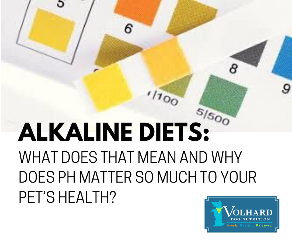 Alkaline diets: What does that mean and why does pH matter so much to your pet's health?