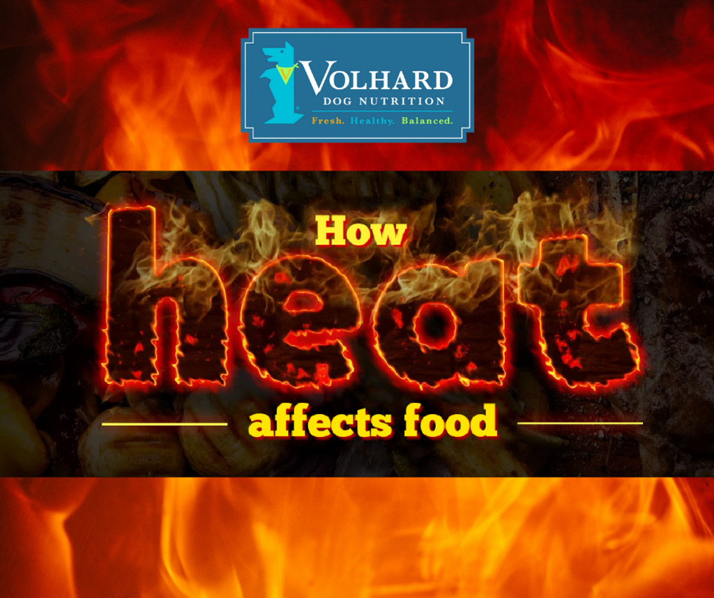 How Heat Affects Food