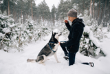 Volhard's Top 9 Tips for Training Your Puppy during the Winter