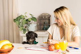 The Top 5 Summer Fruits and Veggies for Your Dog