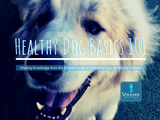 Let's Talk about Protein | Healthy Dog Basics 101