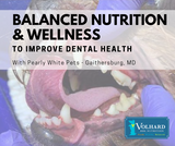 Balanced Nutrition and Wellness to Improve Dental Health