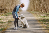 Tailoring the Volhard Diet for Dogs with Kidney Disease