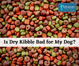 Is Dry Kibble Bad for my Dog?