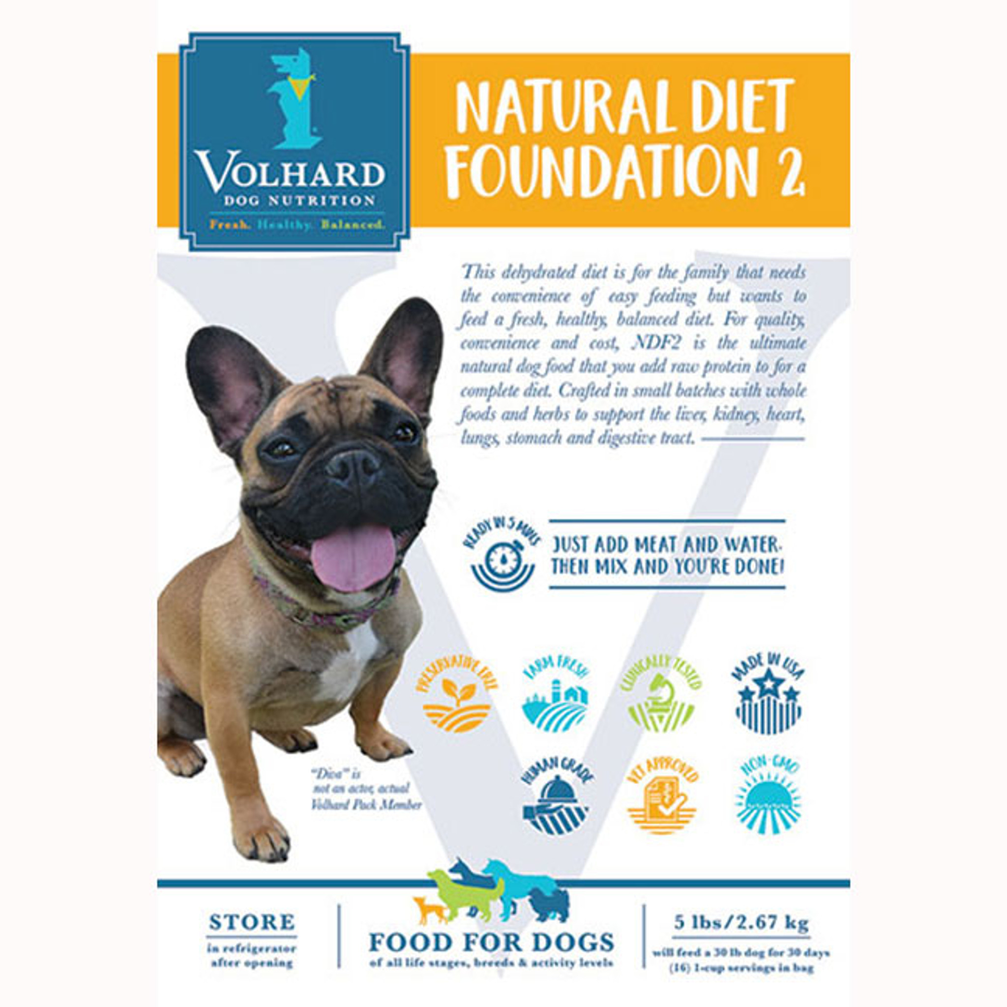 How much food your dog needs