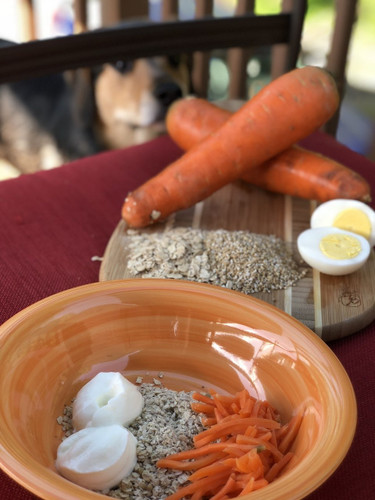 NDF AM Porridge (to which you add vegetables, yogurt, and water) is fed in the morning.