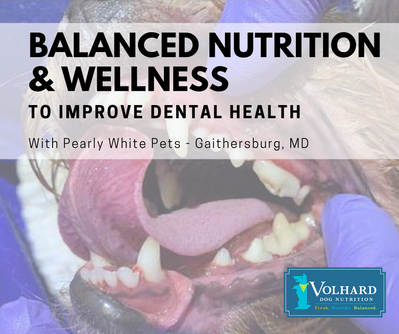 Balanced Nutrition and Wellness to Improve Dental Health