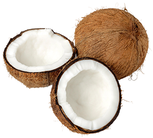coconut-300.png