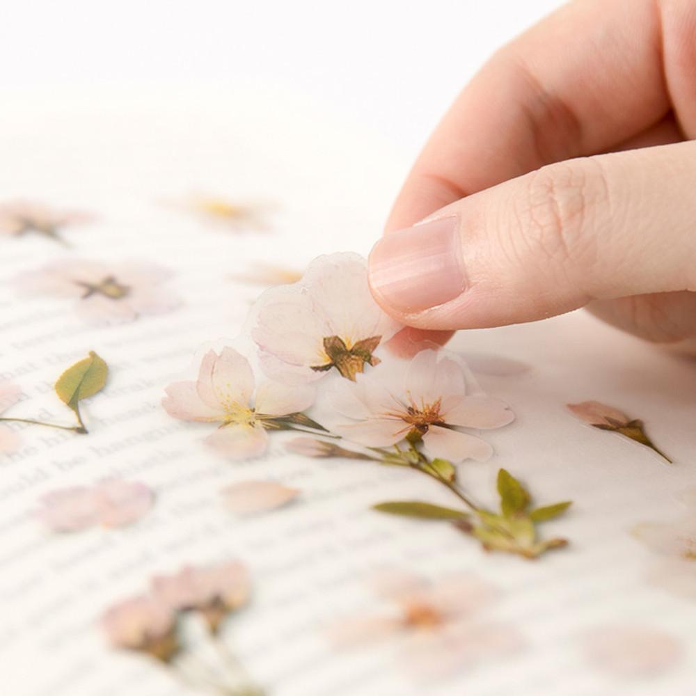 Usage example - Appree Cherry blossom pressed flower deco sticker