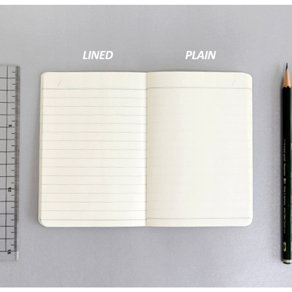Lined and plain notebook