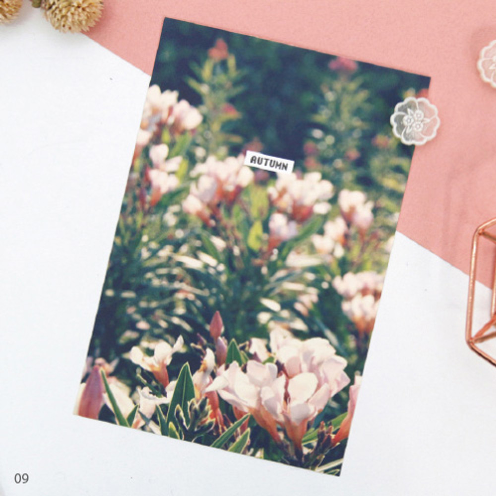 09 - Design postcard ver.3