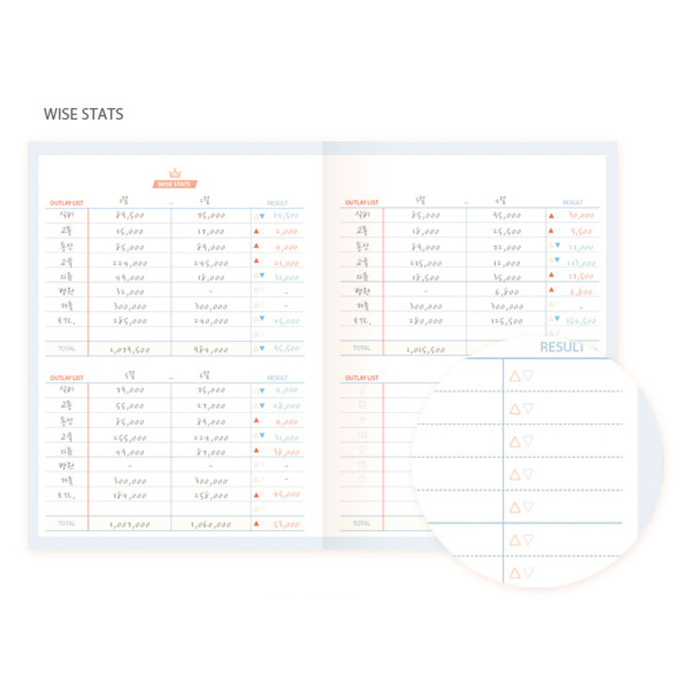 Wise stats - My wise cash book planner