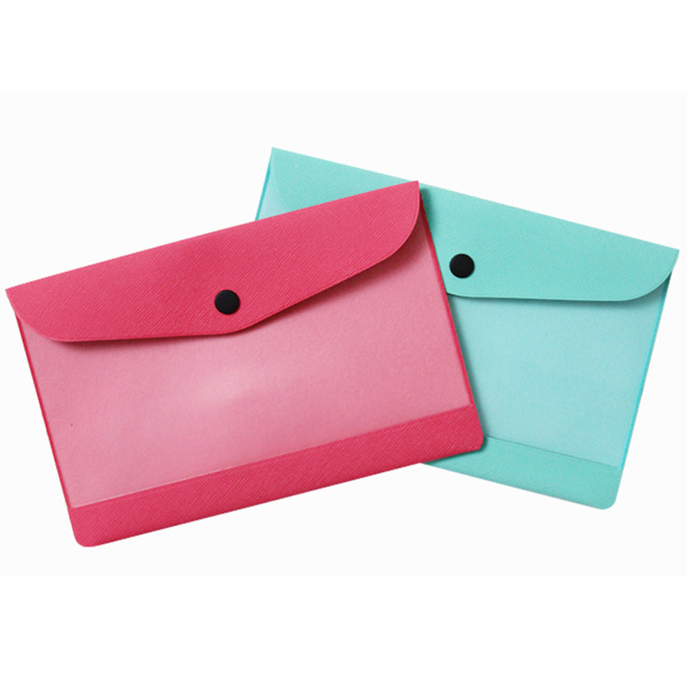 Premium business small clear file folder