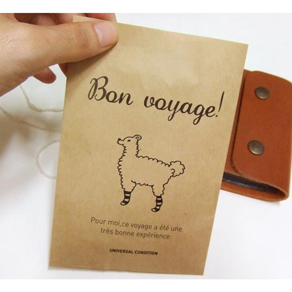 Bon voyage postcard envelope set