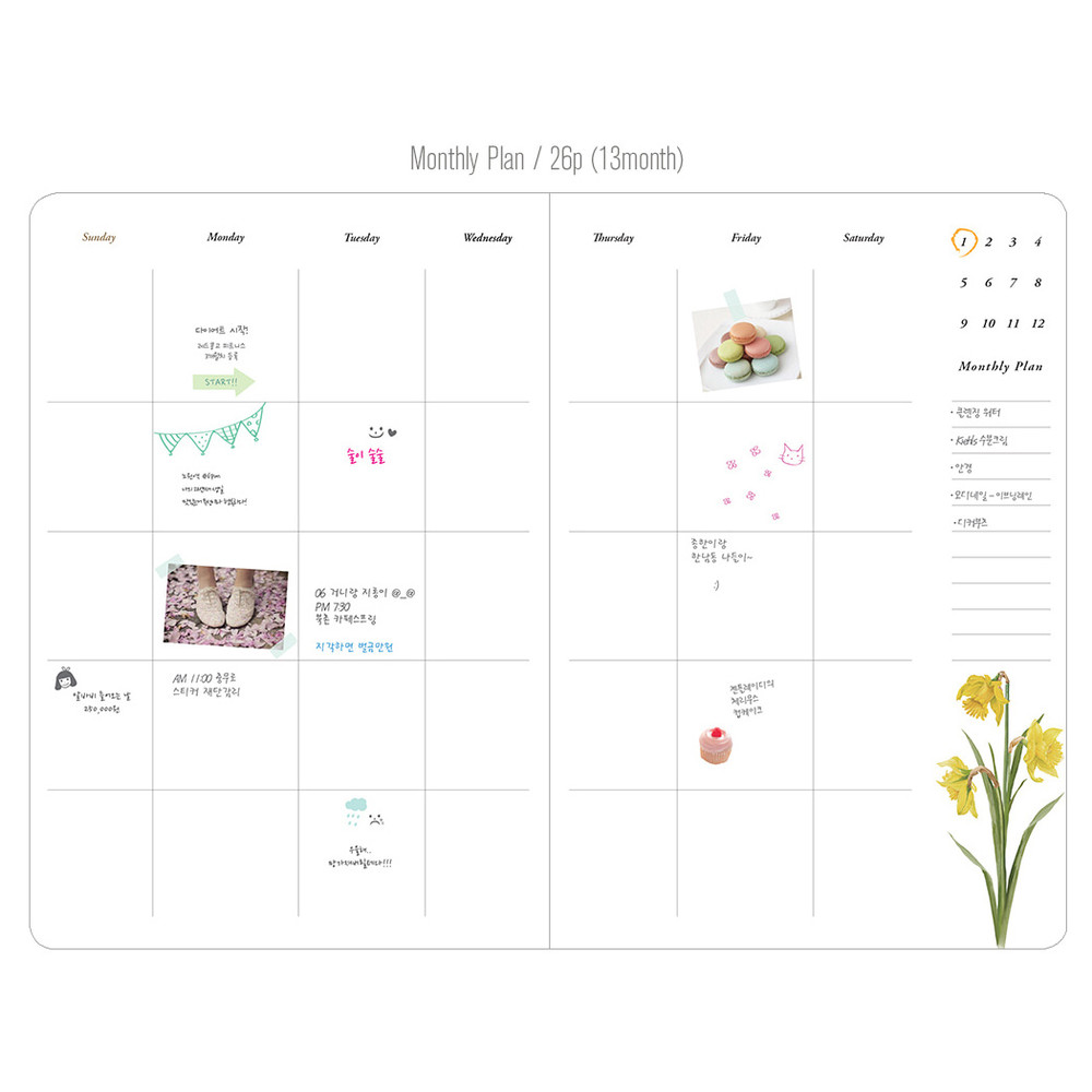 Monthly plan - Flower illustration undated weekly diary