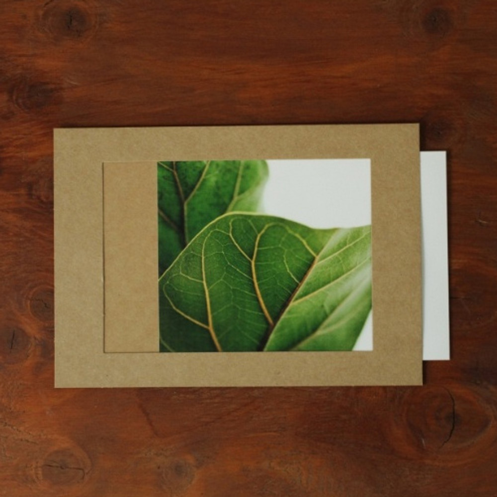 Square 5X7 Kraft paper photo frame set of 15 sheets