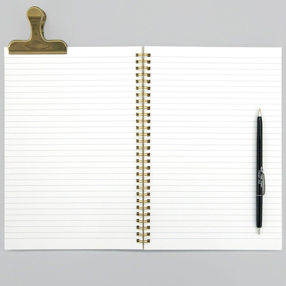 Lined pages - BNTP Everyday is special day spiral lined notebook