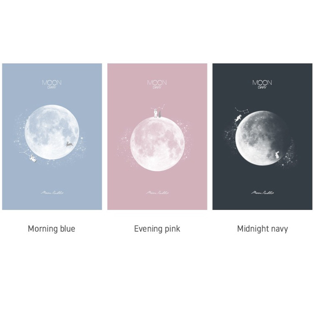 Moon rabbit hardcover undated weekly diary planner